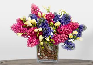 The Hyacinth Vase
