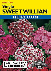SWEET WILLIAM SINGLE MIXED COLORS   HEIRLOOM