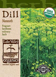 ORGANIC DILL MAMMOTH  HEIRLOOM
