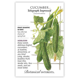 Cucumber English Telegraph
