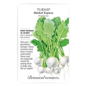Turnip Market Express
