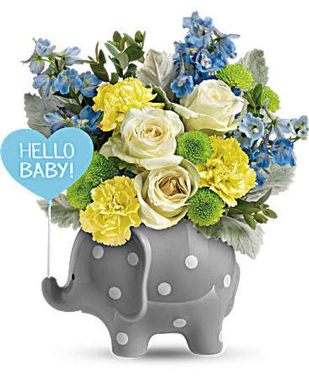 Teleflora's Hello Sweet Baby - Blue