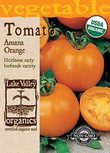ORGANIC TOMATO POLE AMANA ORANGE  HEIRLOOM