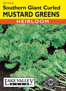 MUSTARD GREENS SOUTHERN GIANT CURLED  HEIRLOOM