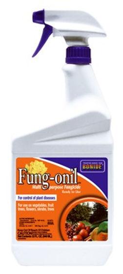 Bonide Products Inc P-Fungonil Multi Purpose Fungicide Ready to Use 1 Quart