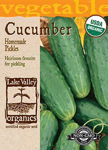 ORGANIC CUCUMBER HOMEMADE PICKLES  HEIRLOOM