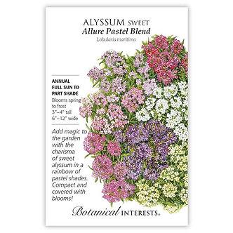 Alyssum Sweet Allure Pastel Blnd