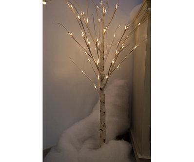 4' WHITE BIRCH TREE 112 WW