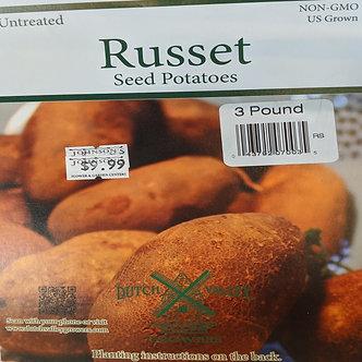 RUSSET SEED POTATO 3lbs