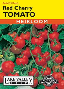 TOMATO BUSH RED CHERRY  HEIRLOOM