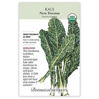 Kale Italian Nero Toscana Org