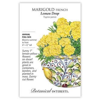 Marigold French Lemon Drop
