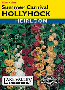 HOLLYHOCK SUMMER CARNIVAL MIXED COLORS   HEIRLOOM