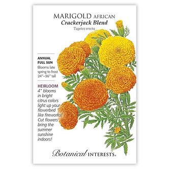 Marigold African Crackerjack