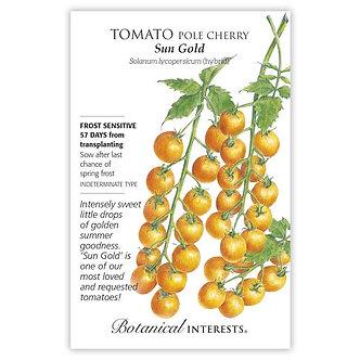 Tomato Cherry Sun Gold hybrid