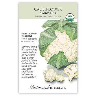Cauliflower Snowball Y Org
