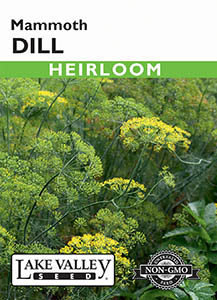 DILL MAMMOTH HEIRLOOM