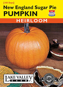 PUMPKIN NEW ENGLAND SUGAR PIE  HEIRLOOM
