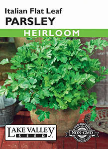 PARSLEY ITALIAN FLAT LEAF  HEIRLOOM
