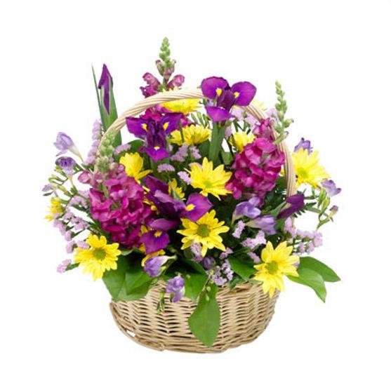 Purple & Yellow Basket