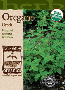 ORGANIC OREGANO GREEK  HEIRLOOM