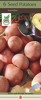 Seed Potatoes 'Kennebec' Box of 6