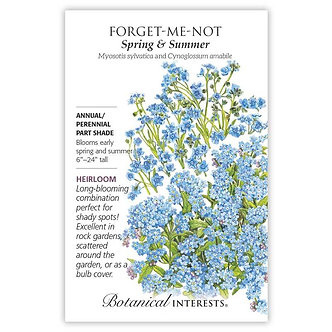 Forget-Me-Not Spring and Summer