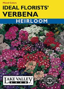 VERBENA IDEAL FLORIST MIXED COLORS  HEIRLOOM