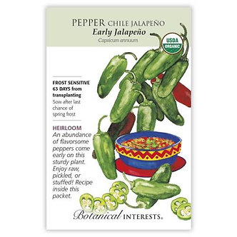 Pepper Chile Jalapeno Early Org