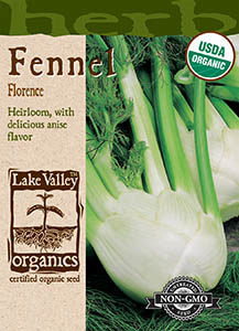 ORGANIC FENNEL FLORENCE  HEIRLOOM
