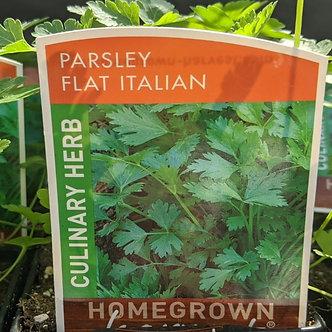 """Parsley - Flat Italian 4"""""""