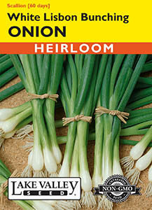 ONION WHITE LISBON BUNCHING   HEIRLOOM