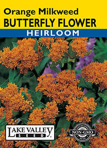 BUTTERFLY FLOWER ORANGE  HEIRLOOM