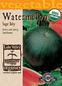 ORGANIC WATERMELON SUGAR BABY   HEIRLOOM