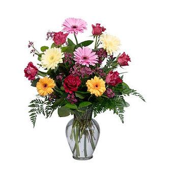 Gerberas & Roses