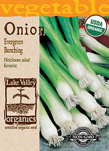 ORGANIC ONION EVERGREEN BUNCHING   HEIRLOOM