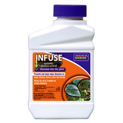 Bonide  Infuse Systemic Fungicide Concentrate - 1 Pint