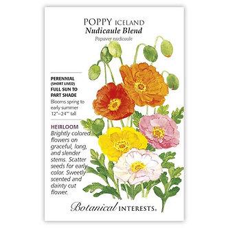 Poppy Iceland Nudicaule Blend