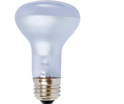 Dayspot Replacement Grow Bulbs