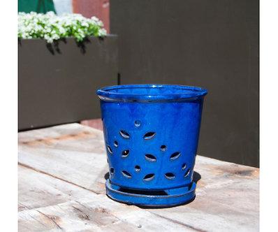 WAIKIKI ORCHID POT 6'' BLUE