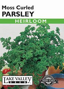 PARSLEY MOSS CURLED   HEIRLOOM