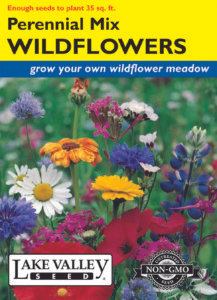 WILDFLOWERS PERENNIAL MIXTURE