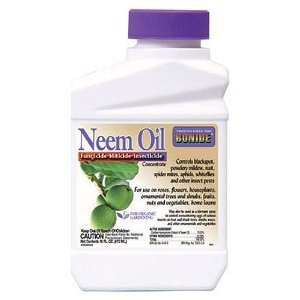 NEEM OIL CONCENTRATE