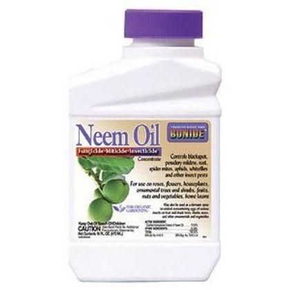 NEEM OIL CONC. 1 PT