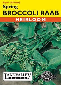 BROCCOLI RAAB SPRING (RAPINI)   HEIRLOOM