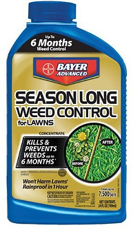 24OZ Conc Weed Control