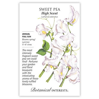 Sweet Pea High Scent
