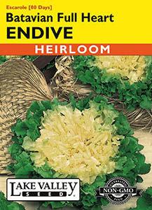 ENDIVE BATAVIAN FULL HEART  HEIRLOOM