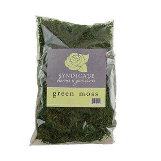 Syndicate Home & Garden 9670-12-00 Green Moss Bag Quart - 6 in. - Case of 12