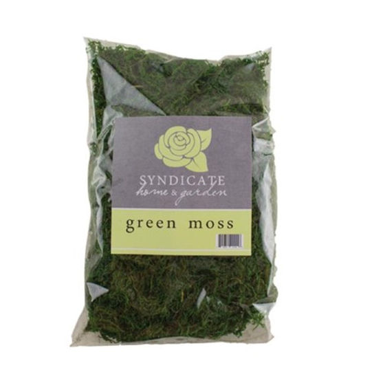 Syndicate Home & Garden 9670-12-00 Green Moss Bag Quart - 6 in.